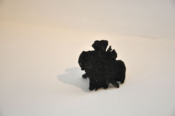 <i>Mushroom</i>, 2012. Resin, coal dust