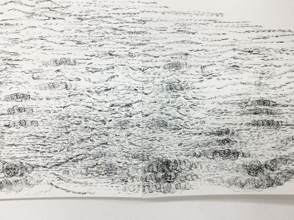 Anne-Mie Melis, Murmuration (close up detail), Drawing on paper, 2016